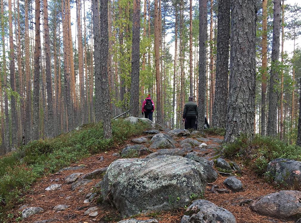 Kansallispuistot tarjoavat retkeilijälle myös haasteellisia reittejä.