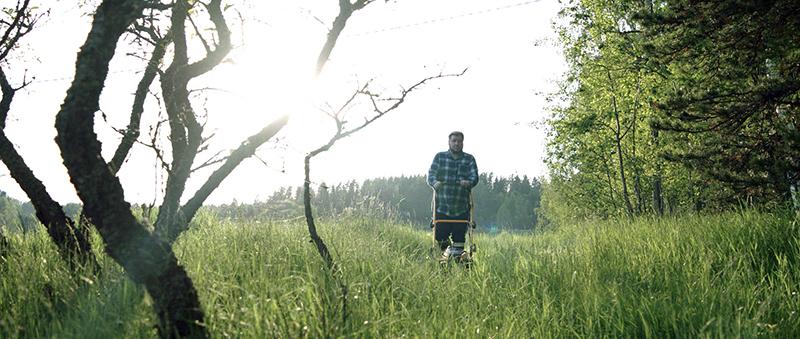 borrelioosi tarttuu punkin puremasta Joonas Berghäll